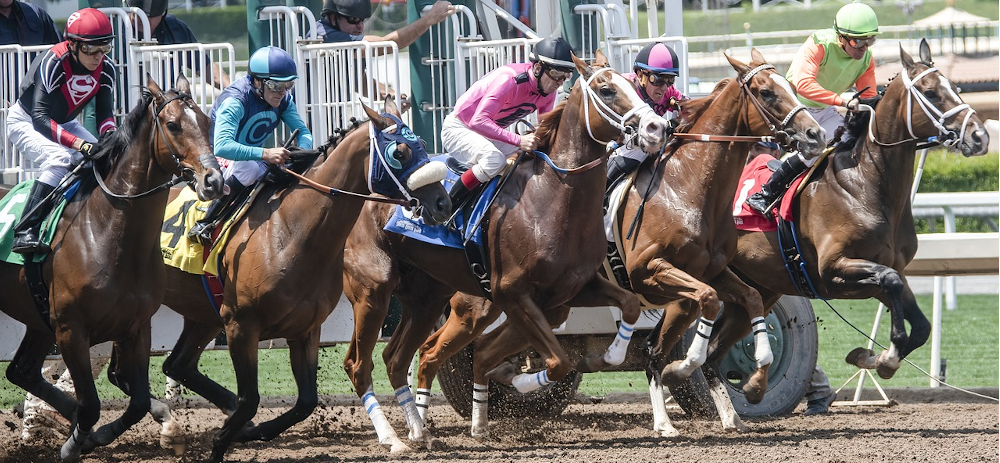 Horse Race Tracks_10 Anniversary Celebration